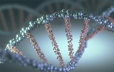 About Texas Genetic Testing, LLC